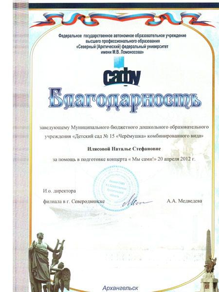 """За помощь в подготовке концерта """"Мы сами!"""" 2012 год"""